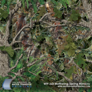 Mothwing-Spring Mimicry