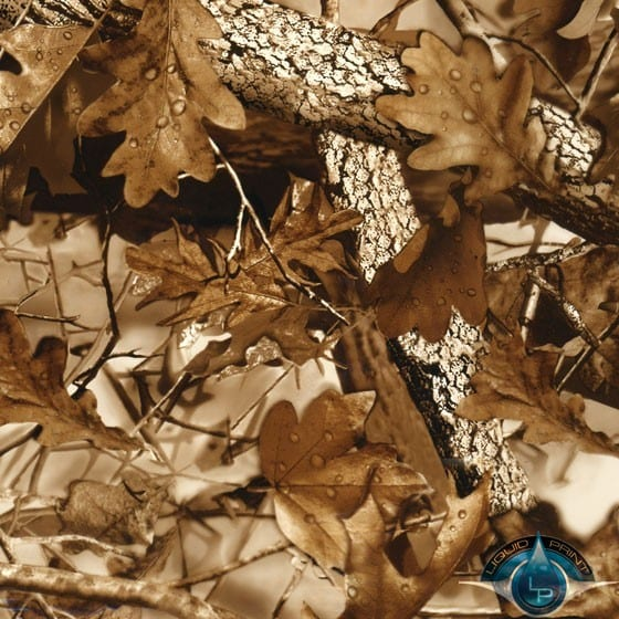 Fall Leaves Brown